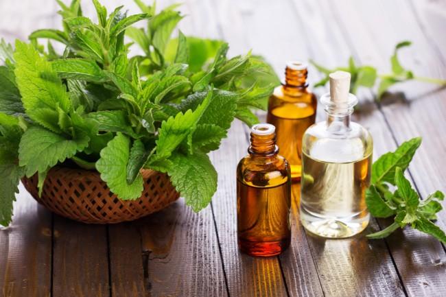 Мята (как свежая, так и эфирное масло мяты) отлично ароматизирует шкаф и защищает вещи из натуральных волокон от моли