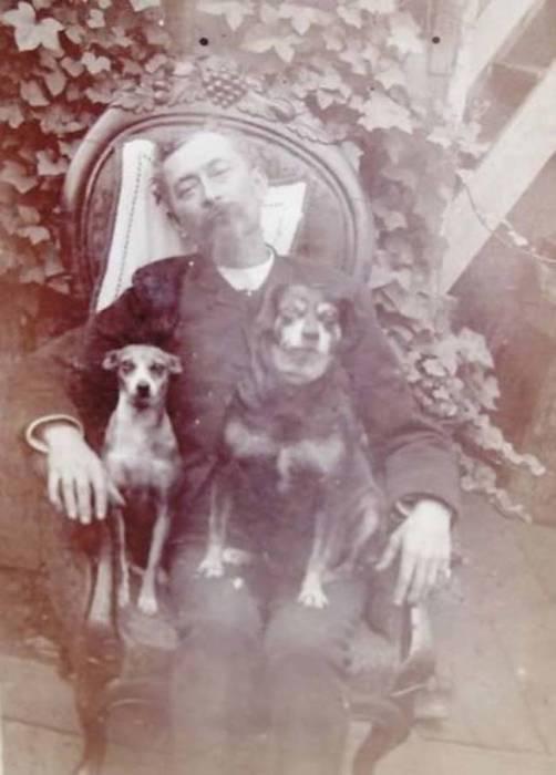 Умерший мужчина со своими любимыми псами.